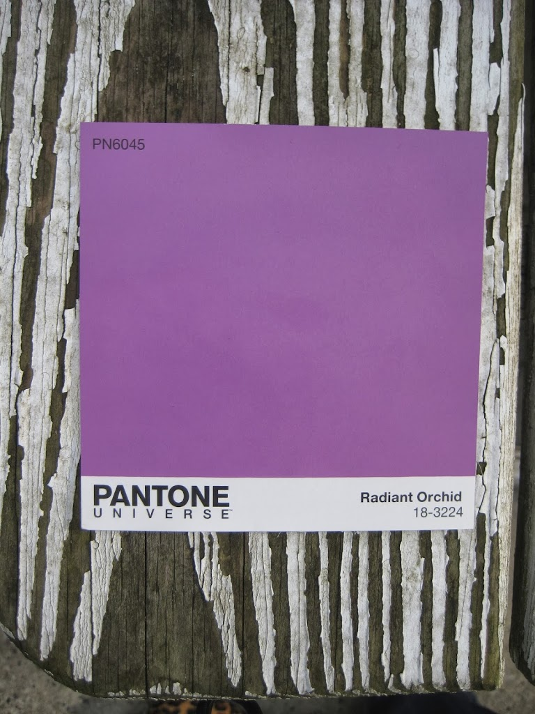 Radiant Orchid with white and grey