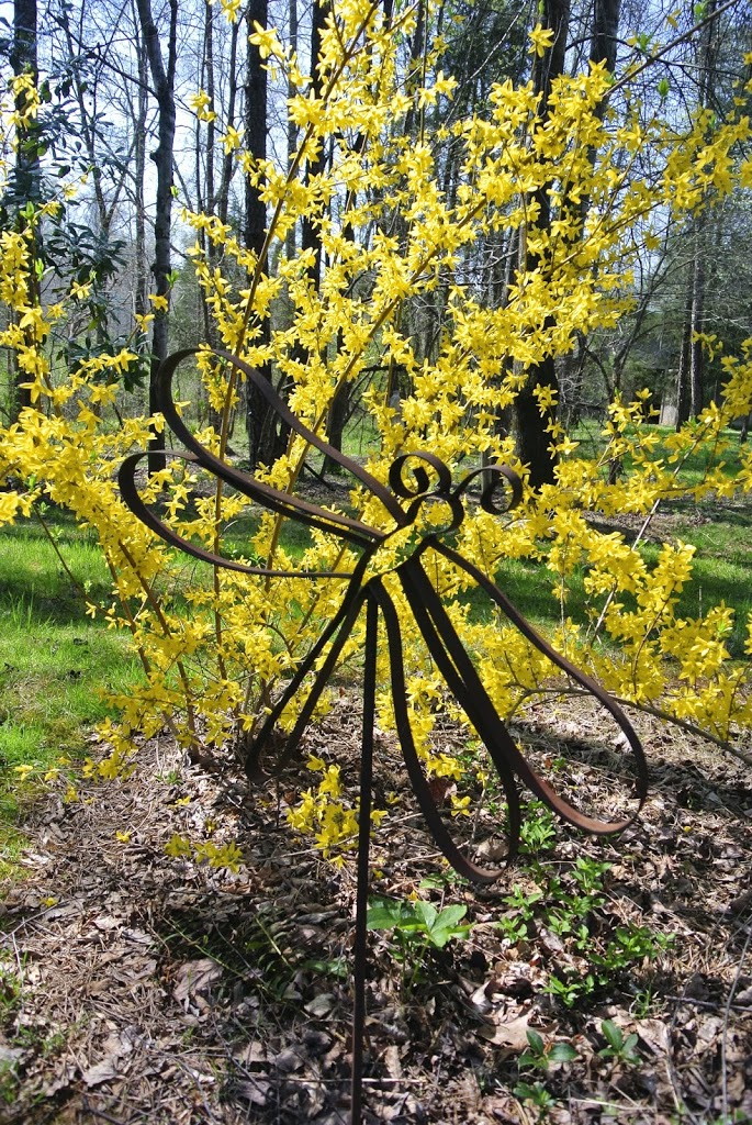 Yellow Forsythia and dragonfly ornamental