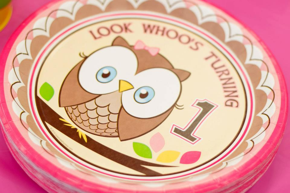 owl theme 1st birthday plates