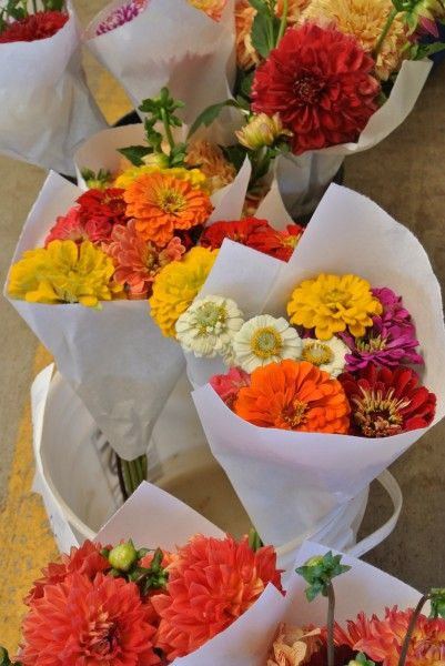 zinnias- Farmers Market with Living With Color Designs