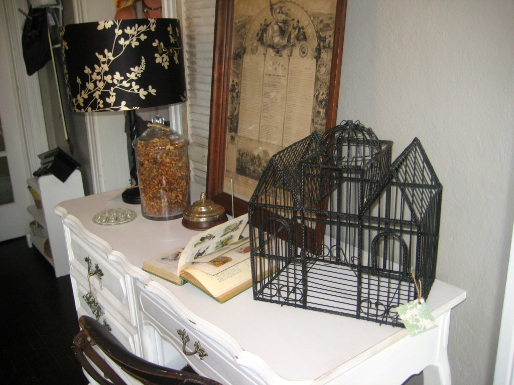 Bird cage and desk