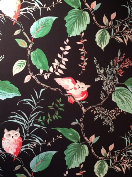 Black wallpaper with Green, Turquoise, and Hot Coral- Owl and Foliage motif OWLISH:BLACK