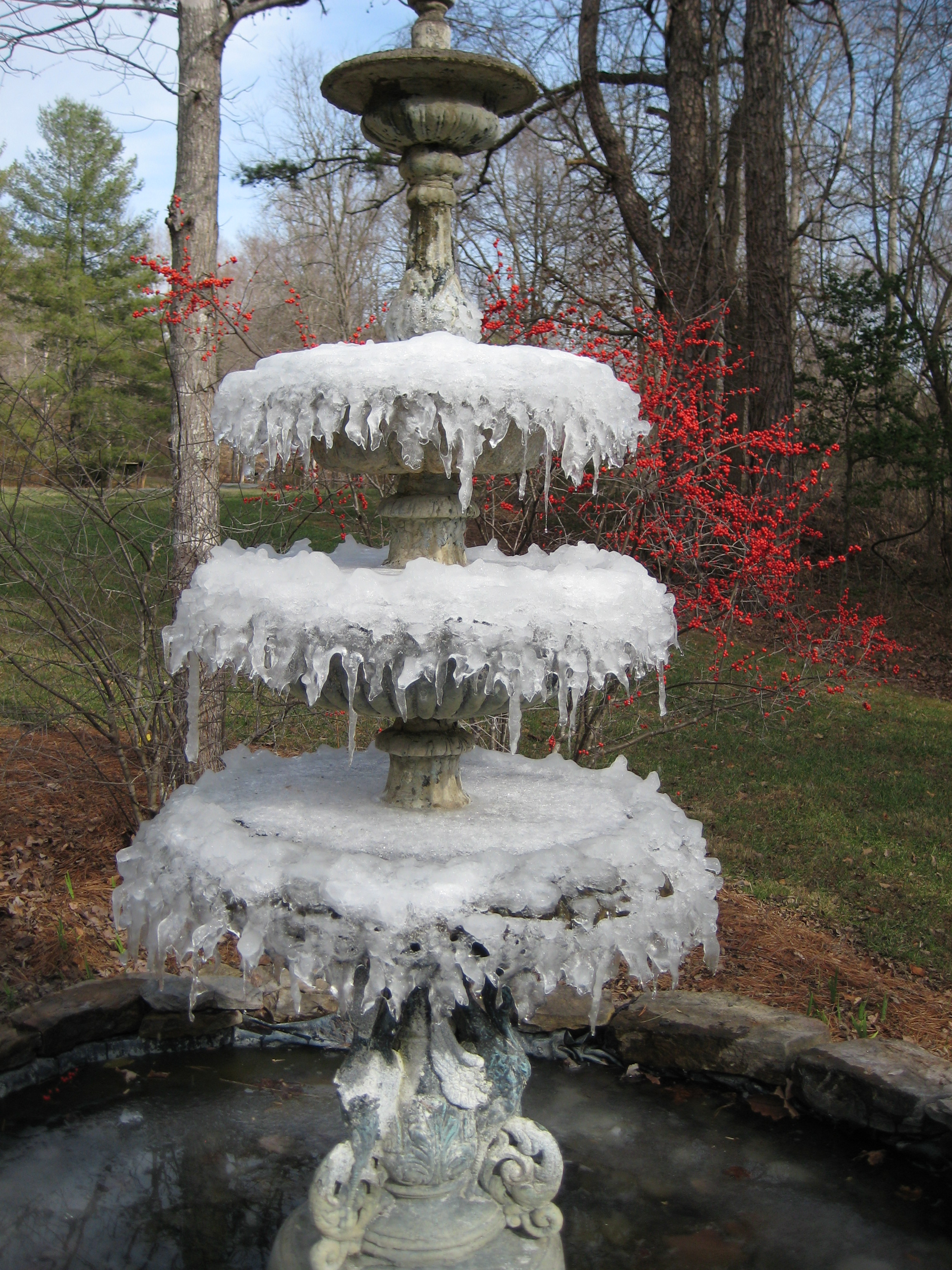 Fountain Frozen Over - Living With Color Designs